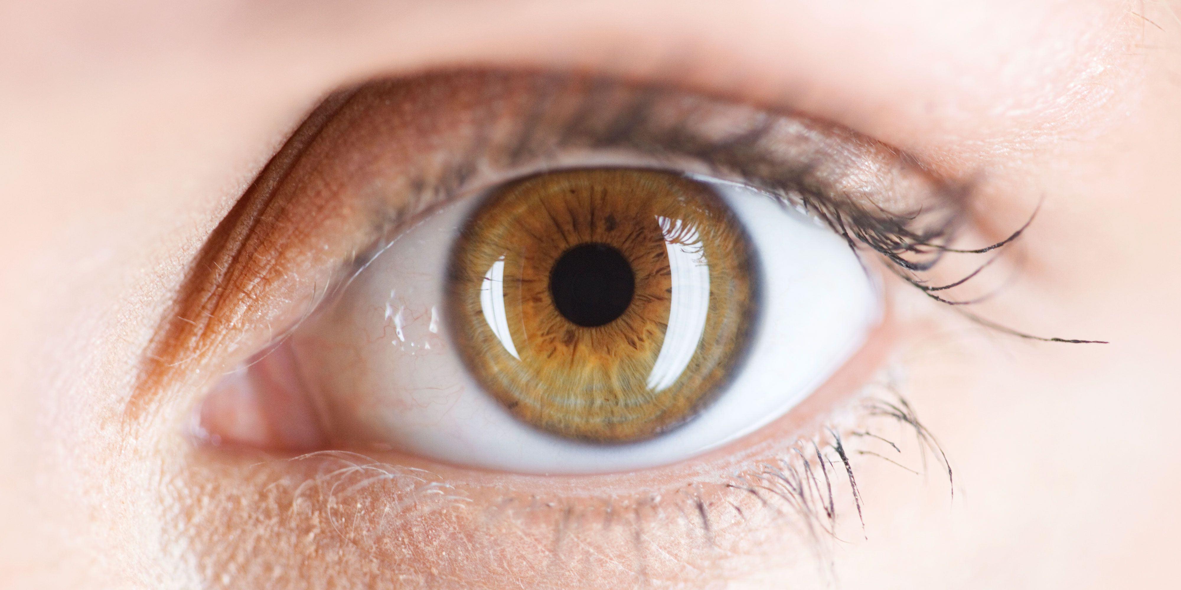 Đôi mắt của con người thay đổi kích thước theo tuổi tác
